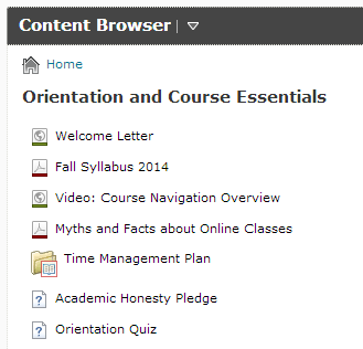 Course Elements NEW ORIENTATION MODULE 1. Welcome Letter from the Instructor 2. Fall Syllabus 2014 Clarifications 3.