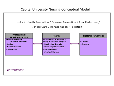 Appendix Conceptual Framework/Conceptual Definitions Conceptual Framework Health is the central concern of nursing and therefore is the core concept of the conceptual framework for the curriculum of