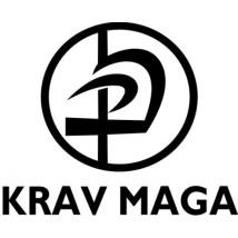 Campaign Report Executive Summary Campaign overview: As part of Google Online Marketing Challenge, we decided to promote a parisian Krav Maga club through our Adwords campaign.