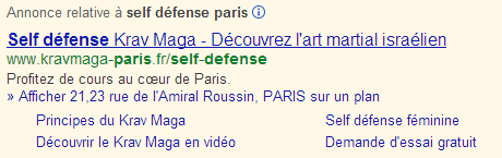 Industry Component Campaign overview: The Adwords campaign of the kravmaga-paris.