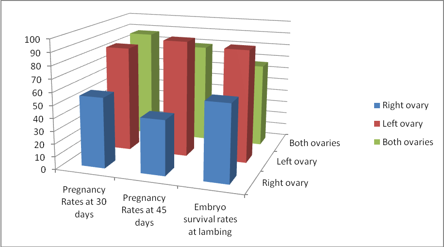 Figure 7. Reproductive response in ovulation sides. There was a controversy increase in pregnancy rates and survivability of embryos transferred to right horn compared to those transferred left horn.