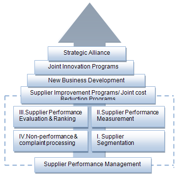 Figure 5.1: Elements of DSM s Supplier Development Program (SDP) 5.3.3 SDP competitive advantage The SDP enables DSM to better utilize the capabilities of their most important suppliers.