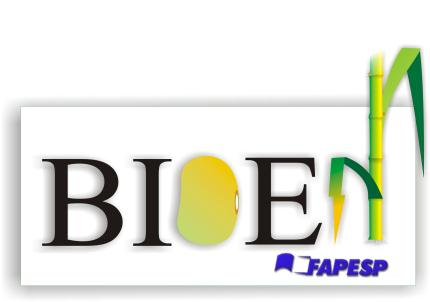 FAPESP Bioenergy Research Program BIOEN: Science for a Bio-based Society Glaucia Mendes Souza University of São Paulo Heitor Cantarella Agronomical Institute of Campinas