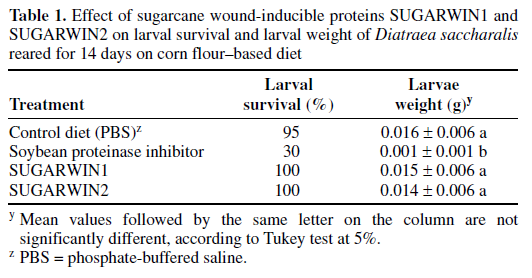 Sugarcane gene against pathogens that follow sugarcane borer attack sugarcane wound-inducible proteins SUGARWIN1 and SUGARWIN2, have been identified in sugarcane by an in silico analysis