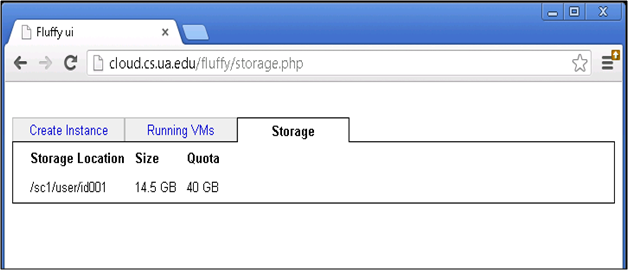 their persistent storage. As shown in Figure 6.7, this tab also shows their current storage usage, as well as their maximum storage quota.