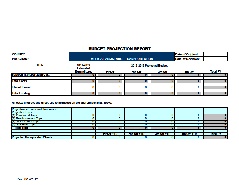 FORMS BUDGET PROJECTION