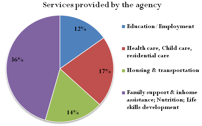 Survey Analysis Non-Provider Survey results The non-provider agencies that completed the surveys in the region include Emmaus Homes, Family Support Division, TEMCO Inc.