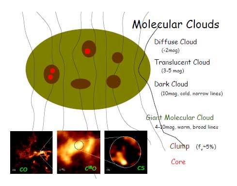 5. Molecular Cloud Structure Brightness and velocity-integrated contours reflect