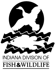 WILD ANIMAL REHABILITATION PERMITS Indiana DNR, Division of Fish and Wildlife July 2011 New Requirements for obtaining a wild animal rehabilitation permit 1) If you have had a rehabilitation permit