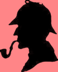 South Carolina Nursing Excellence Conference 2015 Sherlock Holmes: The case of the