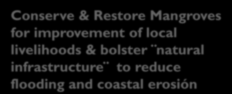 bolster natural infrastructure to