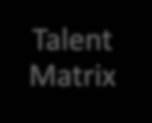 TALENT MATRIX The Talent Matrix, which follows, is a critical tool in the Executive Development processes.