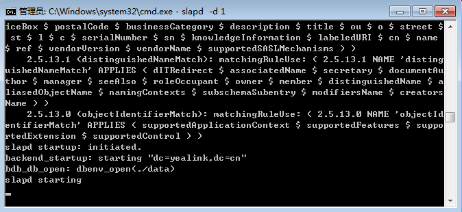 If the service runs successfully, you can find the prompt slapd starting. The screenshot for reference is shown as below: Please do not close this window to make sure the LDAP server keeps running.