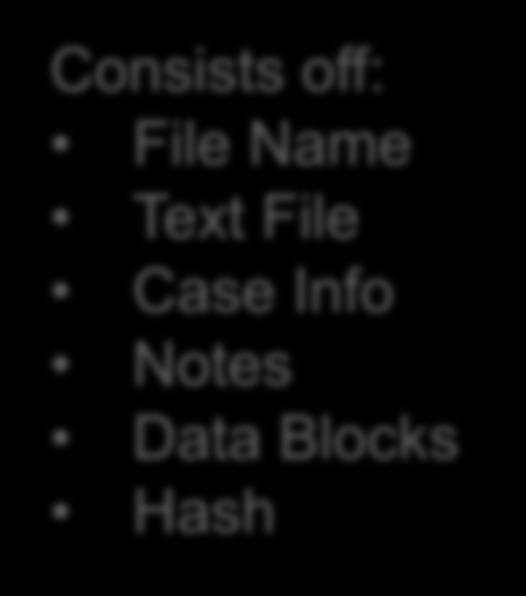Consists off: File Name Text File Case Info Notes Data Blocks