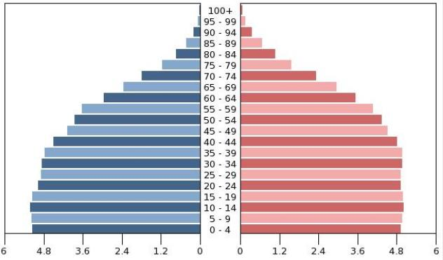 Demographics are on our side Mexico s demographic bonus Mexico s population pyramid (2030)* Male Female China s population pyramid (2030)* 112 million inhabitants with a median age of 26 47 million