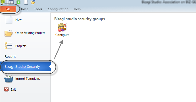 Bizagi BPM Suite Functional Description 24 Bizagi Studio Security Access rights in Bizagi Studio With Bizagi BPM Suite projects can be developed in a collaborative environment where several users can