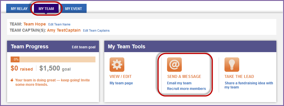 From the My Team tab, click the Email my team link in the My Team Tools box (right hand side of the page). 3. The Send an