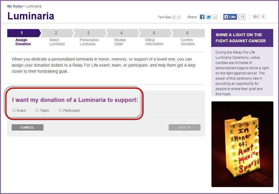 3. When the Luminaria page appears, choose if you would like to credit the luminaria donation a Team, Participant or the general Event by selecting the desired radial button. 4.