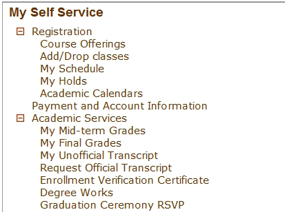 degree works - getting started 1. Open your favorite browser 2. Turn off pop-up blockers (see important note below) 2. Login to GoWMU - http://gowmu.wmich.edu 3. Click the Student Home tab 4.