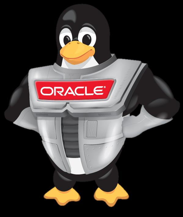 Kernel Oracle Clusterware and Cluster Filesystem Ksplice for zero
