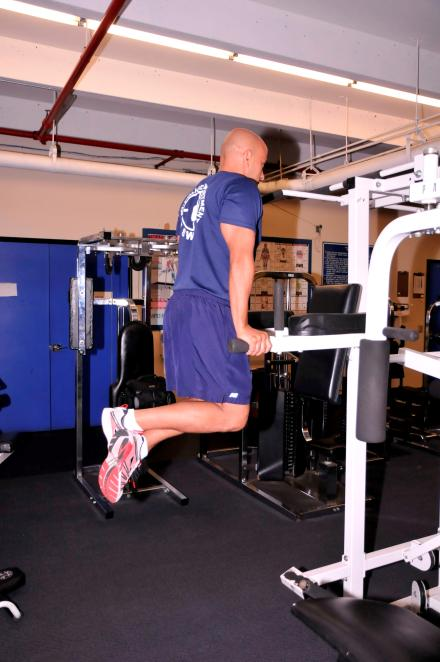 DIP TARGET AREAS: CHEST AND TRICEPS Hold yourself erect on bars with elbows slightly bent.