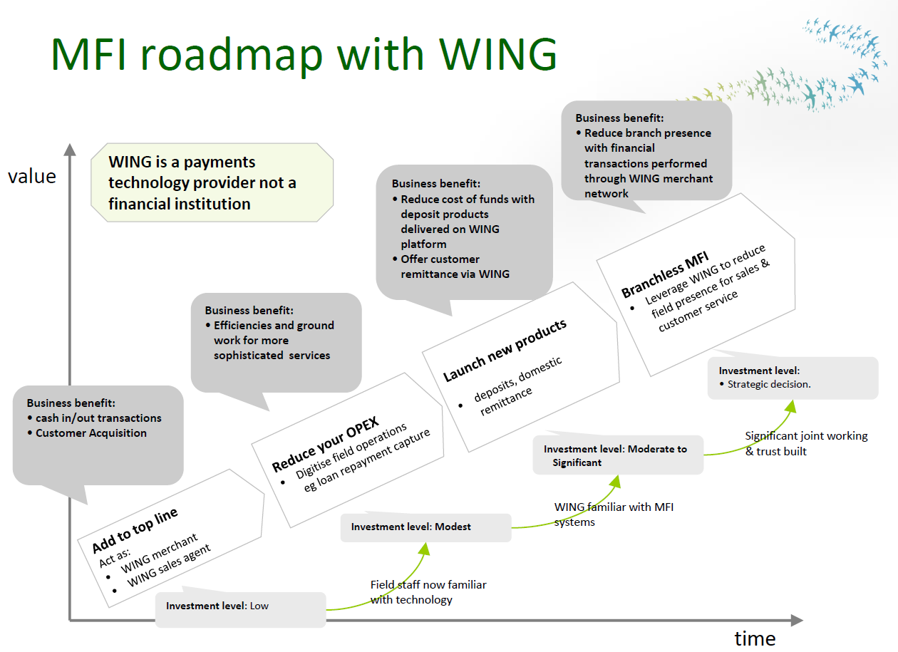 MFI roadmap