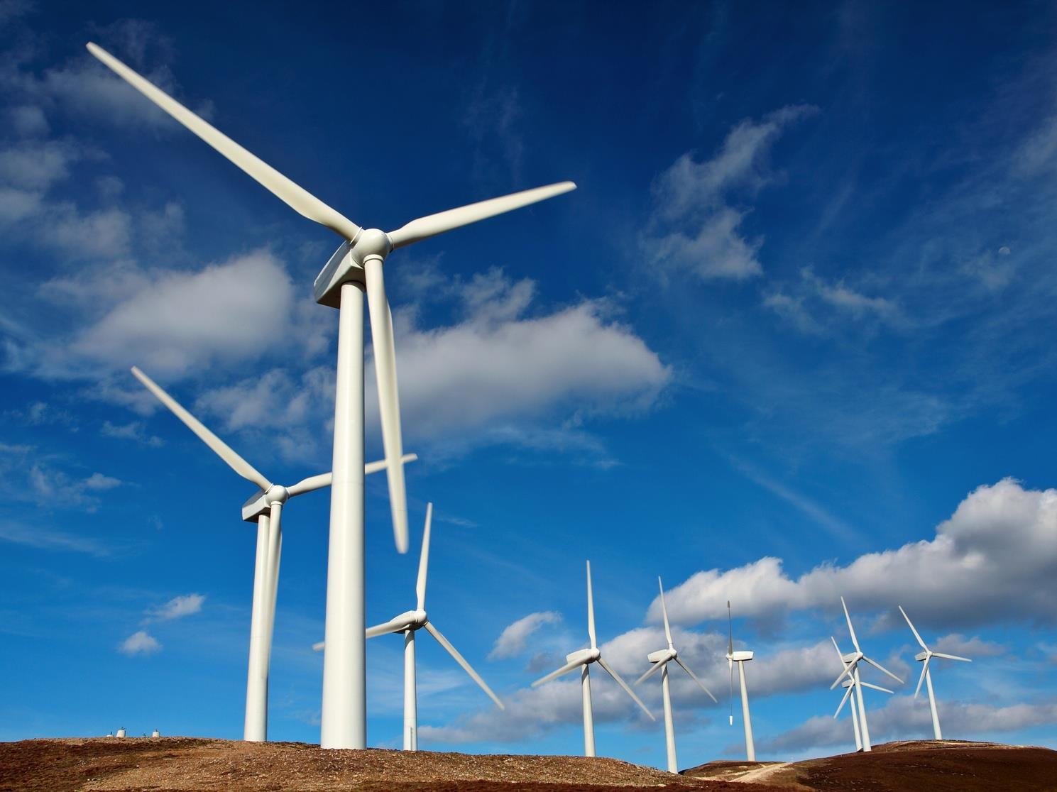 Grid pays 6m to turn off wind farm turbines Wind