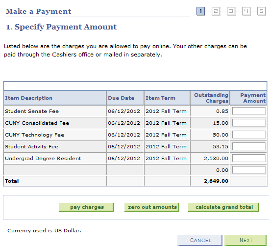 5. The 1. Specify Payment Amount page displays.