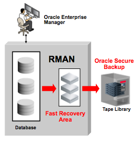 Oracle Recovery Manager (RMAN) Backup To The Fast Recovery Area Simplifies all recovery processes That s why you backup in the first place Logical and physical Shrink the backup window Incremental
