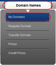 Hosting your first domain Creating glue records for your own nameservers.