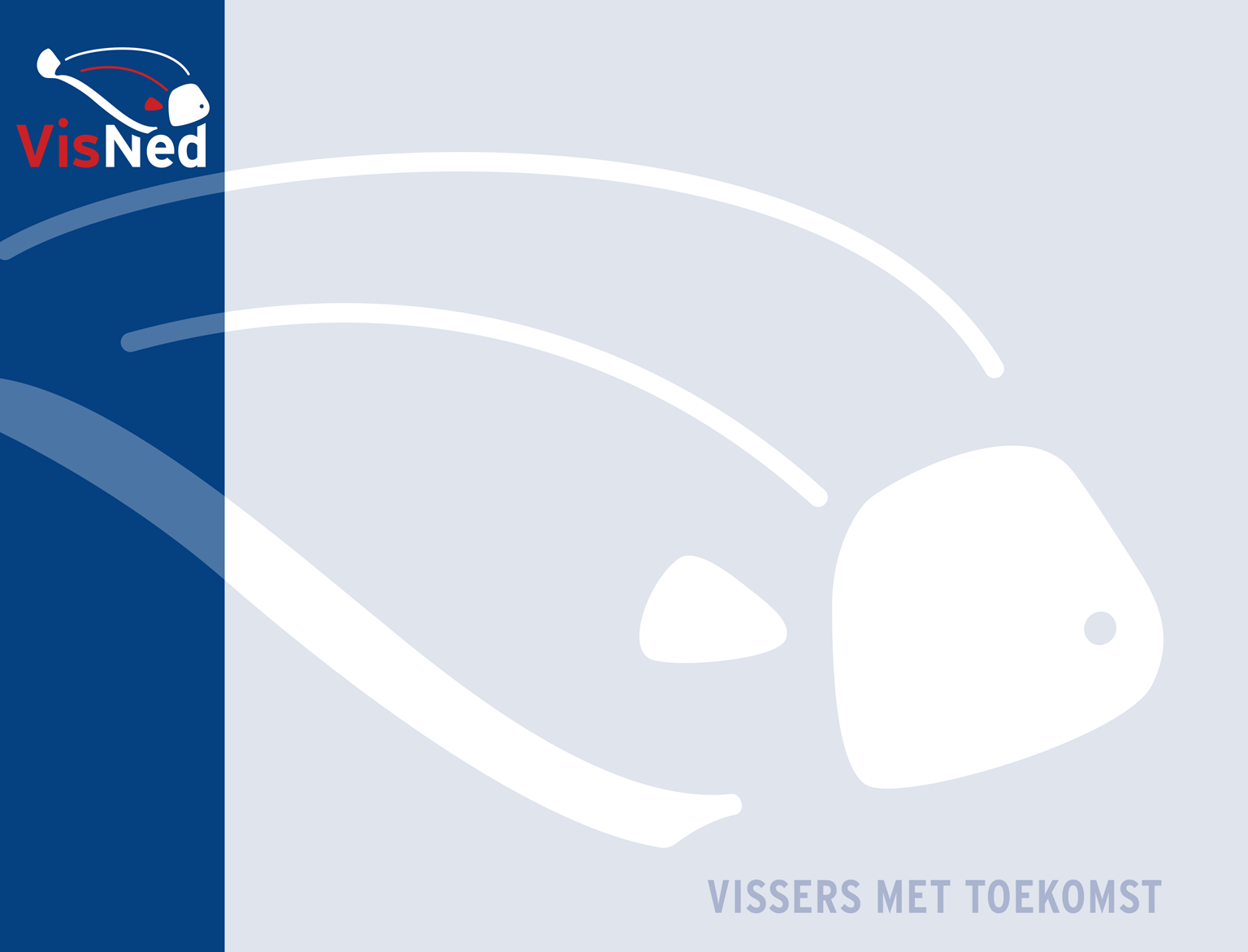 Improving Selectivity process in constant need of incentivisation A Dutch Flatfish Fisheries Point of