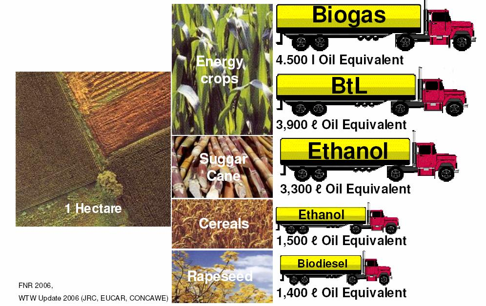 Biogas production potential Among the biofuel options BIOMETHANE shows a high potential coming