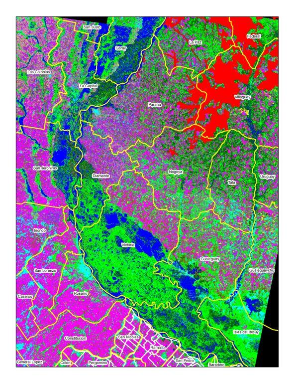 Excluded areas for primary forest presency at january 2008.