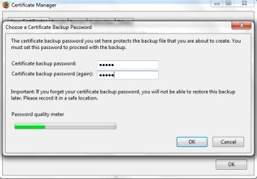 Once you choose to save the certificate you will be prompted to create a password for this backup file.