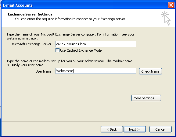 In the Server Type window, click Microsoft Exchange Server. Click Next. In the Server Settings dialog box: In the Microsoft Exchange Server field, enter divex.