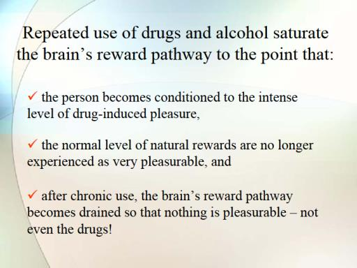Addiction and Brain Research This is why addicts