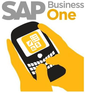 SAP Business One Mobility Technology background SAP Business One mobile capabilities based on Integration Component* Technology to build mobile applications to give customers
