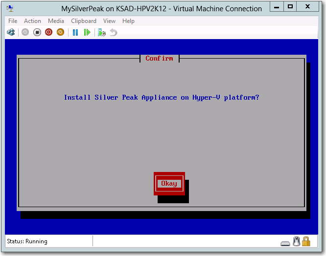 This displays a console window for the virtual appliance, and the system initializes.