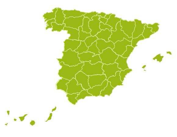 The General Council of Social Work 37 Social Worker s professional organisations / colleges 40,000 members Profesisional Organisations Spain Colegios Oficiales de Álava, Alicante, Almería, Aragón,