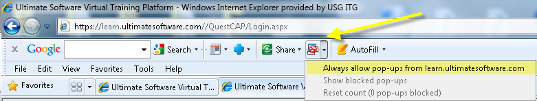 3. POPUP BLOCKERS AND TOOLBARS On Internet Explorer -> Tools -> Internet Options (The recommended version of IE is the 32-bit