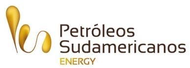 Ramshorn Intenational Limited COMPLETION CAMPAIGNS WITH RIGS DISCOVERY 2, 3 and 5, 2010, 2011 2012, C&C Energy COMPLETIONS AND WORKOVER CAMPAIGN WITH RIG DISCOVERY 3 and DISCOVERY 4, 2011, Petróleos