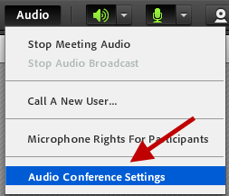 2. After the Audio Conference is started, you will choose how you want to join the Audio Conference via Phone or Microphone. Students will have the same options to choose from.