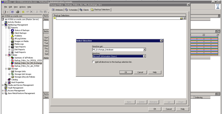 Figure 25. Selecting a directive set for Microsoft Exchange Server Note: The NetBackup VSS snapshot method does not support single mailbox restores.