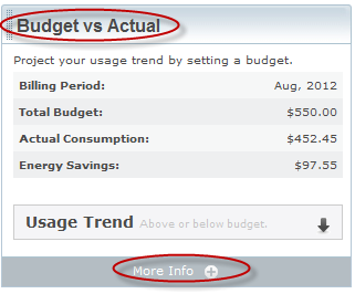 Groups: The Budget vs Actual tool The Budget vs. Actual tool displays energy savings based on your actual consumption and the budget that you ve set. By clicking on More Info on the Budget vs.