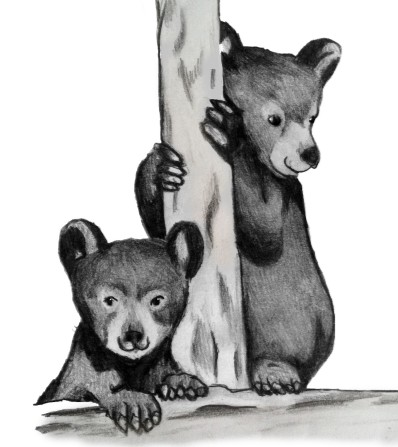 Wide Hollow Cubs Bear Facts Office 972-5550 wh-office@wvsd208.org WV Child Care 965-5107 OCTOBER 9, 2014 Jake Hall, Principal Shelly Jaeger, Secretary Vol. 1 No.