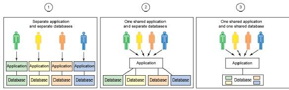 organization works with a customized virtual application instance.
