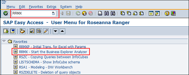 Accessing BEx Tools via SAP GUI Result: User is logged on. 3.
