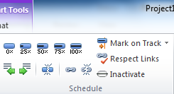 More Details More options on the Task Tab Schedule section Here you can manually mark the percentage of completion Mark selected tasks so they are on schedule Inactive tasks (only tasks with no