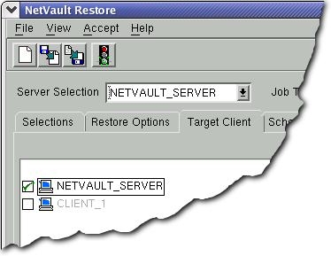 NetVault : Backup User s Guide 21 Important: 1. If the entire contents of a backup saveset are not selected for the restore, the recovery will fail once it is launched. 2. If a disk is comprised of four primary partitions, the fourth partition will be automatically converted to an extended logical partition during the recovery.