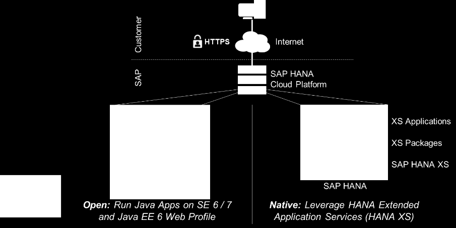 Monitor, debug and profile apps in the cloud Implement and run control flows and front-ends in HANA & Java Develop,